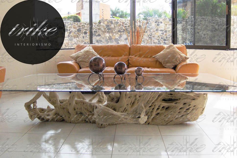 Raíz madera de cactus   trike interiorismo